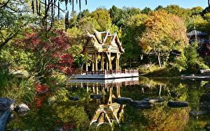 Обои Осень Пруд Камень Пагоды Парк Мюнхен Германия Бавария Westpark
