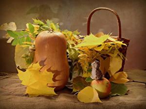 Фотографии Осенние Тыква Яблоки Ежики Лист Еда