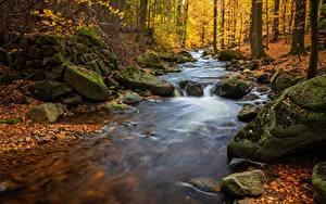Картинка Осень Речка Камни Листья Мхом