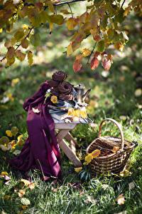 Фото Осень Натюрморт Выпечка Ветвь Лист Корзины Траве Продукты питания