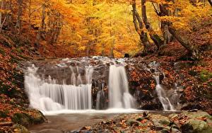 Обои Осенние Камни Водопады Леса Лист