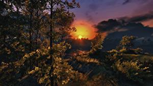 Картинка Осень Рассвет и закат Небо Солнце Деревьев Облако Природа