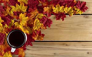Фото Осень Чай Чашка Лист Доски Клёна Шаблон поздравительной открытки Еда
