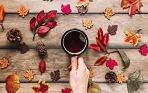 Картинка Осень Чай Доски Кружка Рука Лист Шишки Продукты питания