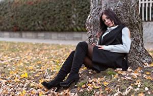 Картинка Осень Ствол дерева Поза Сидит Ног Сапог Листья молодые женщины