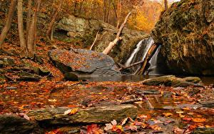 Фотографии Осень Водопады Камень Листья Скала