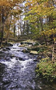 Картинки Осень Водопады Камни Дерева Природа