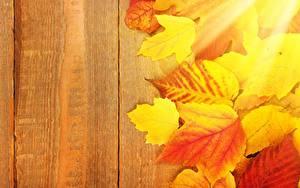 Обои Осенние Доски Листья Шаблон поздравительной открытки