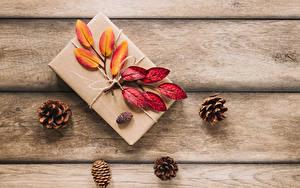 Фото Осенние Доски Подарки Листва Шишки Природа