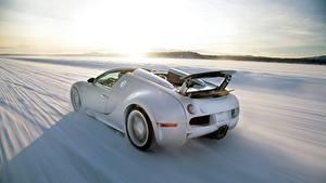 Обои BUGATTI Сзади Белая Едет Снег Родстер Veyron Grand Sport Roadster автомобиль