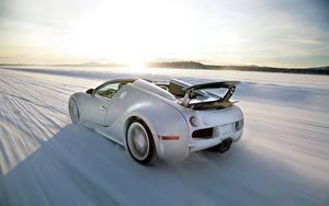Обои BUGATTI Сзади Белый Скорость Снег Родстер Veyron Grand Sport Roadster Автомобили