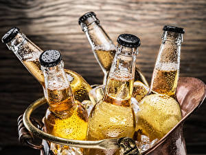 Обои Пиво Бутылка Капель Еда