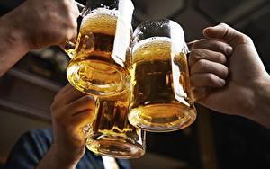 Обои Пиво Кружки Трое 3 Руки Еда