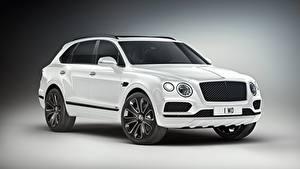 Обои для рабочего стола Bentley CUV Белая Металлик Сером фоне Дорогой Bentayga V8 Design Series, 2019 автомобиль