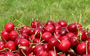 Фотографии Ягоды Черешня Много Красная Пища