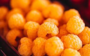 Картинка Ягоды Малина Много Крупным планом Желтый Боке Еда