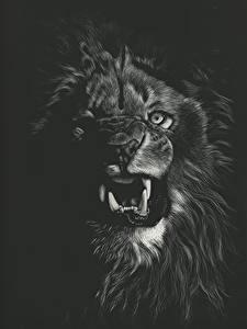Картинки Большие кошки Львы Клыки Рисованные Черный фон Оскал Черно белое Животные