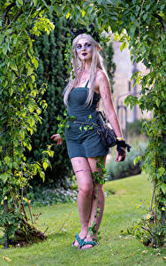 Фото Блондинки Поза Платье Мейкап Косплей