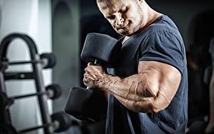 Фотография Бодибилдинг Мужчина Руки Мускулы Гантелями Тренировка Спорт