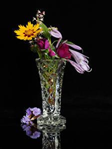 Фотография Букет На черном фоне Вазе цветок