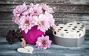 Картинки Букет Хризантемы День всех влюблённых Коробки Подарок Вазе Сердечко цветок
