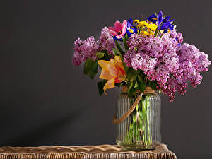 Фото Букеты Сирень Тюльпаны Банка Цветы
