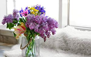 Фото Букеты Сирень Тюльпаны Ирисы Банки цветок