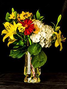 Обои для рабочего стола Букет Лилия Гортензия Хризантемы Черный фон Вазе цветок