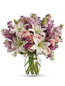 Обои Букеты Лилии Розы Маттиола Белый фон Цветы