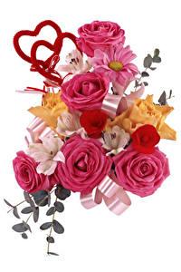 Картинка Букеты Розы Альстрёмерия Белый фон Сердце Цветы
