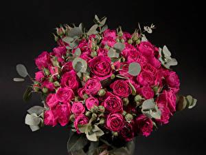 Картинки Букеты Розы Черный фон Бордовые Цветы