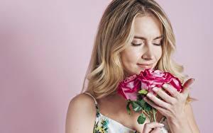 Картинка Букет Роза Цветной фон Блондинки Нюхают девушка Цветы