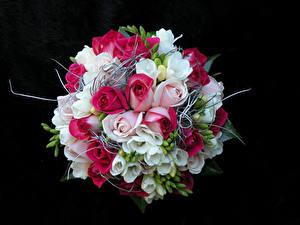 Картинки Букеты Роза Фрезия На черном фоне Цветы