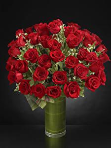 Фотография Букеты Розы Серый фон Ваза Красный Цветы