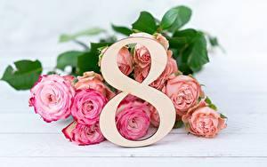 Фотография Букет Роза Международный женский день цветок