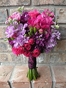 Фотография Букеты Розы Маттиола Фрезия Цветы