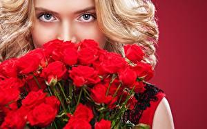 Фотографии Букеты Роза Блондинок Смотрит Фотомодель Mykhailo Orlov Девушки Цветы