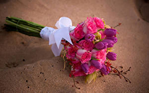 Картинки Букет Роза Тюльпан Орхидеи