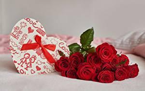 Фото Букет Роза День святого Валентина Коробка Бантик Подарок Серце цветок