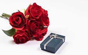 Обои Букет Роза Белом фоне Красная Подарок Коробки цветок