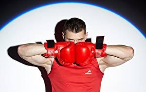 Фотографии Бокс Мужчина Боксера Взгляд Руки Перчатках спортивный