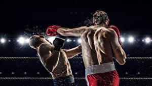Картинка Бокс Мужчины 2 Спина Удар спортивная