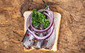 Обои Хлеб Рыба Лук репчатый Бутерброды Доски