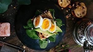 Фотографии Бутерброд Яйцо Завтрак Базилик душистый
