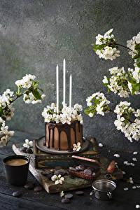Фото Торты Свечи Цветущие деревья Шоколад Кофе Капучино Стакана Пища