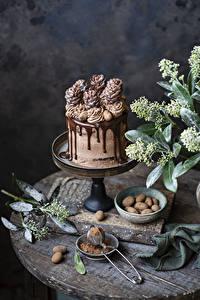 Фото Торты Сладкая еда Шоколад Дизайна Какао порошок Пища