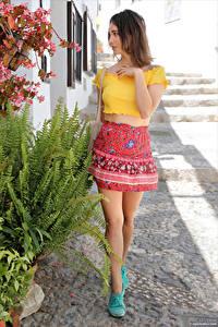 Фотографии Calypso Muse Шатенка Ноги Юбки Блузка молодые женщины
