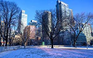 Картинки Канада Здания Зимние Снег Деревья Toronto Города