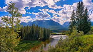 Фото Канада Гора Речка Парк Банф Облако Дерево Alberta Природа