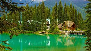 Фото Канада Парки Озеро Леса Здания Пирсы Мосты Ель Yoho National Park Alberta